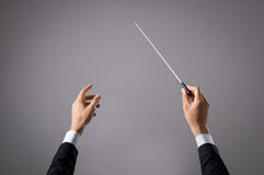 Musician directing concert. Concert conductor hand with baton isolated on grey background. Chorus composer holding baton during a opera. Musician directing Royalty Free Stock Photography