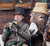 Musician With Donkey In Dingle Ireland. Busking musician with donkey and pet bird in Dingle Ireland Stock Photography