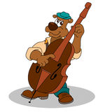 Musician funny bear plays double bass Stock Photos