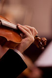 Musician hand on the fingerboard violin Royalty Free Stock Image