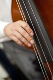 Musician hand playing the contrabass Stock Photography