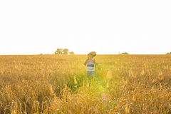 Musician holding acoustic guitar and walking in summer fields at sunset Stock Photography