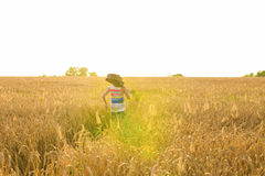 Musician holding acoustic guitar and walking in summer fields at sunset Royalty Free Stock Photo