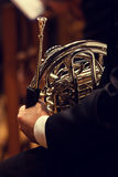 Musician holding a french horn Royalty Free Stock Images