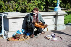 Musician performs at Boston Public Gardens. Stock Photos