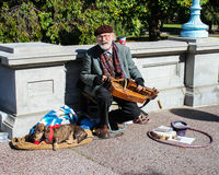 Musician performs at Boston Public Gardens. Royalty Free Stock Photos