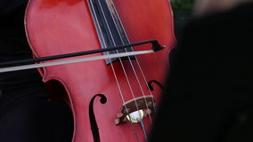 Musician play on cello stock video footage