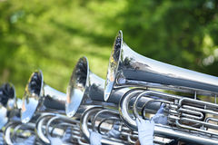 Musician play marching Tuba. In park Stock Image