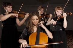 Musician play violin on dark Royalty Free Stock Image