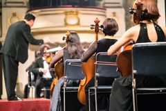 Musician play violin. Female violinist playing the violin stringst on the concert stage. Closeup.  Stock Photo