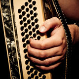 Musician playing accordion Royalty Free Stock Photo