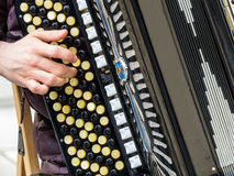 Musician playing on an accordion. Musician playing on accordion. street music is popular Stock Photography