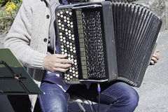 Musician playing accordion Stock Image
