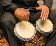 Musician playing the bongos Royalty Free Stock Photography