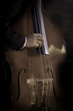 Musician playing double bass. Royalty Free Stock Photos