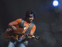 Musician playing a guitar Stock Photography
