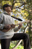 Musician Playing Outdoors. A man plays the Merlin, a diatonic sting instrument, in the park during an Autumn festival Stock Images