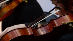 Musician playing viola in a string quartet. On a concert stock footage