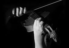 Musician playing violin. Isolated on black Royalty Free Stock Image