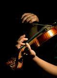 Musician playing violin Royalty Free Stock Images