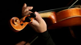 Musician playing violin stock video