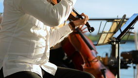 The musician playing the violin. 1080p stock footage