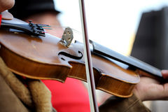 Musician playing violin on the street. Close up photo. Stock Photo