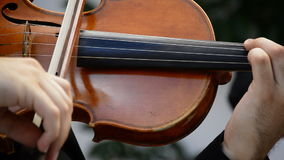 Musician playing violin or viola in a concert stock footage