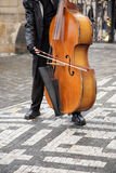 Musician plays. The man the musician plays on a contrabass in the street Stock Photo