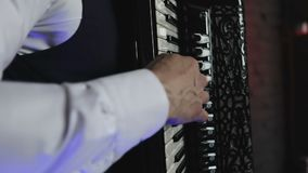 A musician plays the accordion. stock footage