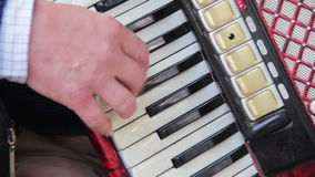 The Musician Plays the Accordion stock video