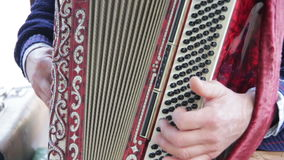 The Musician Plays the Accordion stock video footage