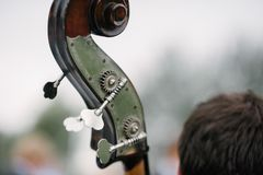 The musician plays the double bass bow close-up stock photos