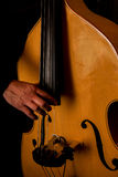 Musician plays the double bass. Royalty Free Stock Photos