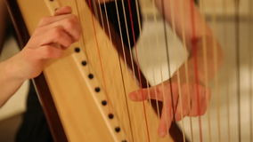 Musician plays the harp. Close up of musician plays the harp. Shot with a Canon 5D Mark II stock video footage