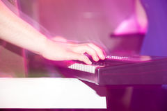 Musician plays keyboards in a rock band.  Royalty Free Stock Photo