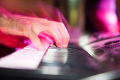 Musician plays keyboards in a rock band.  Stock Images