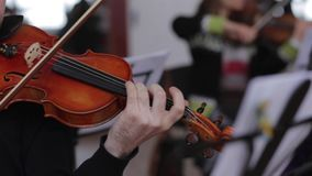 Musician plays the violin stock video footage