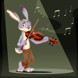 Musician Rabbit. Royalty Free Stock Image