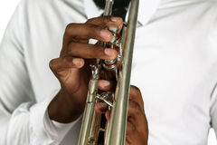 The musician's hands. Stock Photography