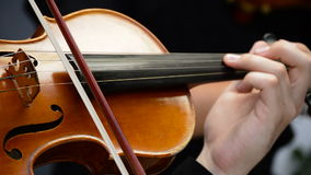 Musician violinist playing violin or viola in a concert. Musician playing viola in a string quartet on a concert stock footage