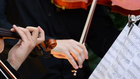 Musician violinist playing violin or viola on a concert. Musician playing viola in a string quartet on a concert stock video
