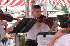 Musicians at the festival Royalty Free Stock Photo