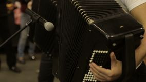 Musicians play the accordion stock footage