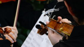 Musicians playing violin or viola in a concert stock video footage