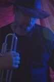 Musicien de bleus   Images stock
