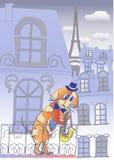Musicien de chien à Paris même bleu Image stock