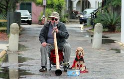 Musicien de rue avec le chien à St Augustine dans le jour pluvieux photos libres de droits