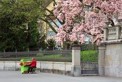 Musicien de rue jouant le piano au centre historique Zug, Suisse image stock