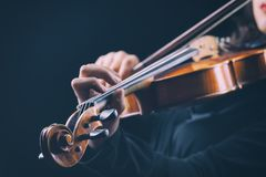 Musicien jouant le violon Photographie stock